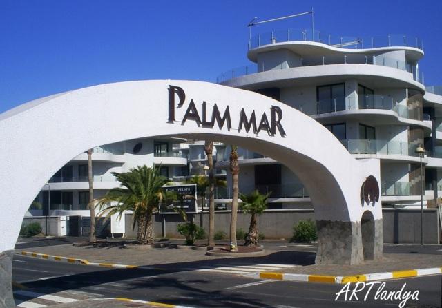 palm_mar1